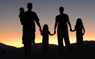 MOȘTENIRE DE FAMILIE (Bo 5764)