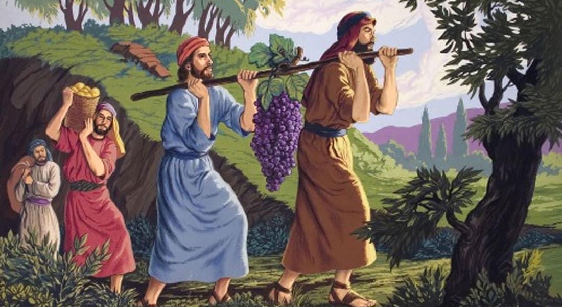 AI GRIJĂ CE ÎȚI DOREȘTI (Șelah 5764)