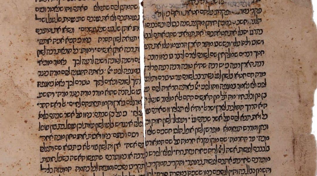 RAȘI DESPRE TORA (Bereșit 5766)