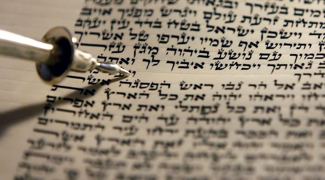 THE NEW BOOK OF THE TORAH (Balak 5775)