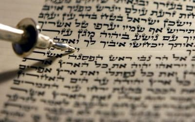 THE NEW BOOK OF THE TORAH (Balak 5775)