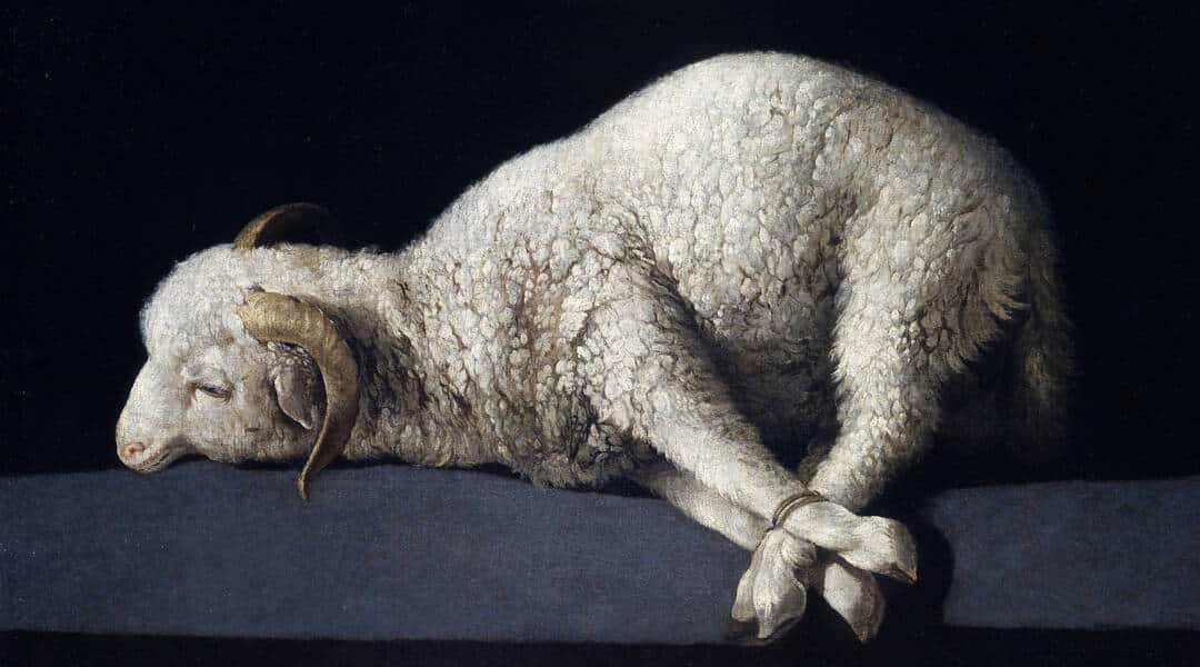 SACRIFICII ȘI PĂCATE (Vaikra 5779)